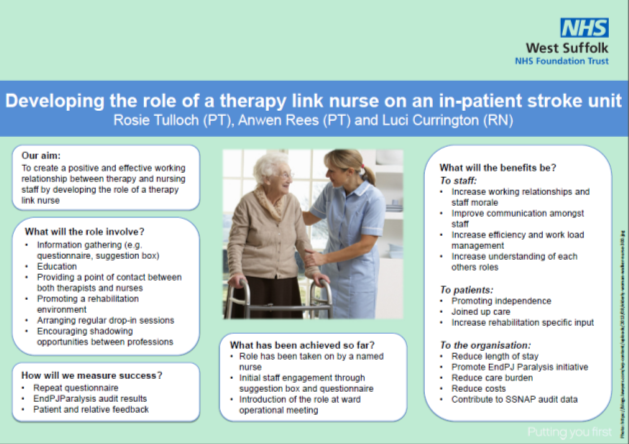 Developing the Role of a Therapy Link Nurse on an In-Patient Stroke Unit